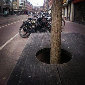 benauwde boom Kinkerstraat